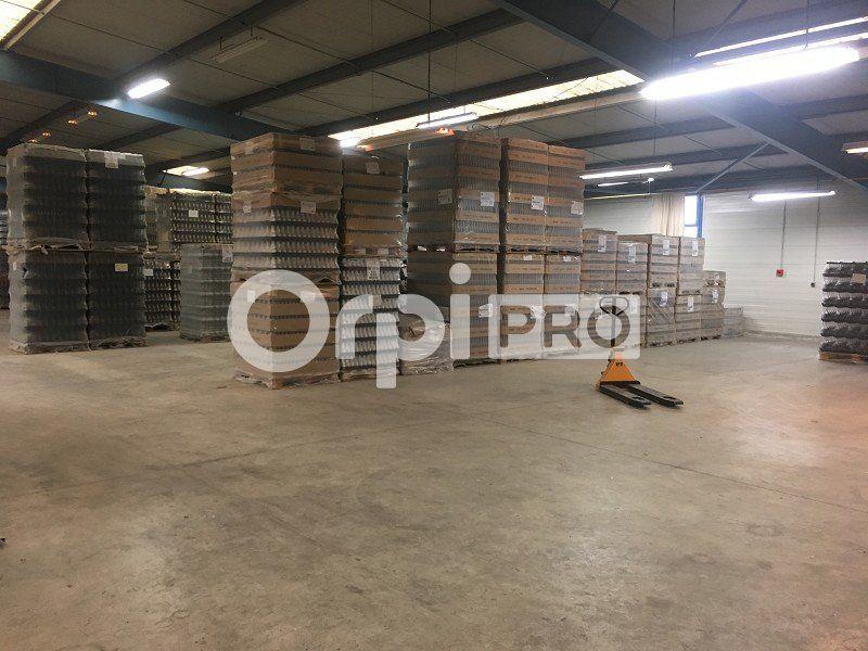 Local d'activité à vendre 0 3200m2 à Limoges vignette-5