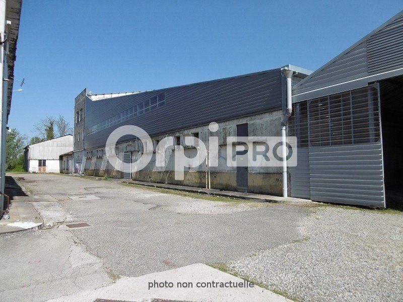 Entrepôt à louer 0 6000m2 à Montauban vignette-4
