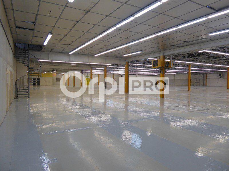 Entrepôt à louer 0 2600m2 à Feytiat vignette-2