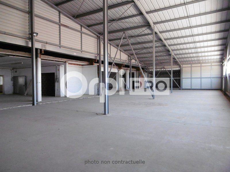 Entrepôt à louer 0 6000m2 à Montauban vignette-9