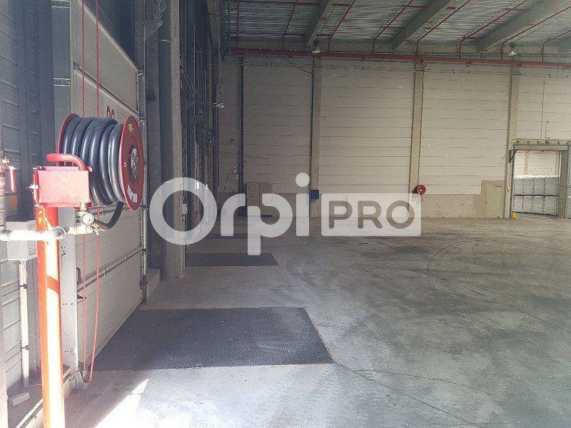 Entrepôt à louer 0 25809m2 à Brétigny-sur-Orge vignette-5