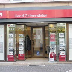 Lion d'Or Immobilier