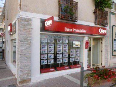 Dana Immobilier