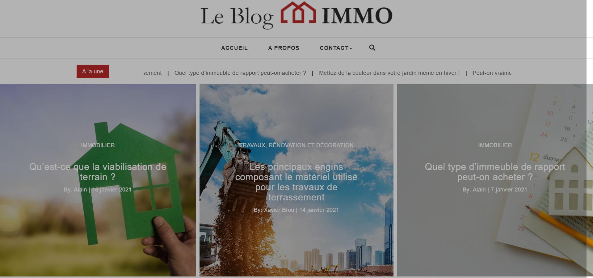 impression-ecran-page-accueil-le-blog-immo